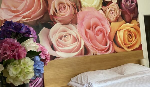 Aparmán Roses